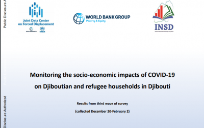 Monitoring the socio-economic impacts of COVID-19 on Djiboutian and refugee households in Djibouti – results from R3
