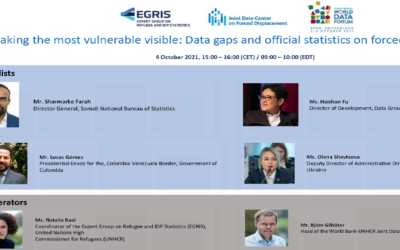 Making the most vulnerable visible: Data gaps and official statistics on forced displacement| UNWDF EGRIS-JDC Session